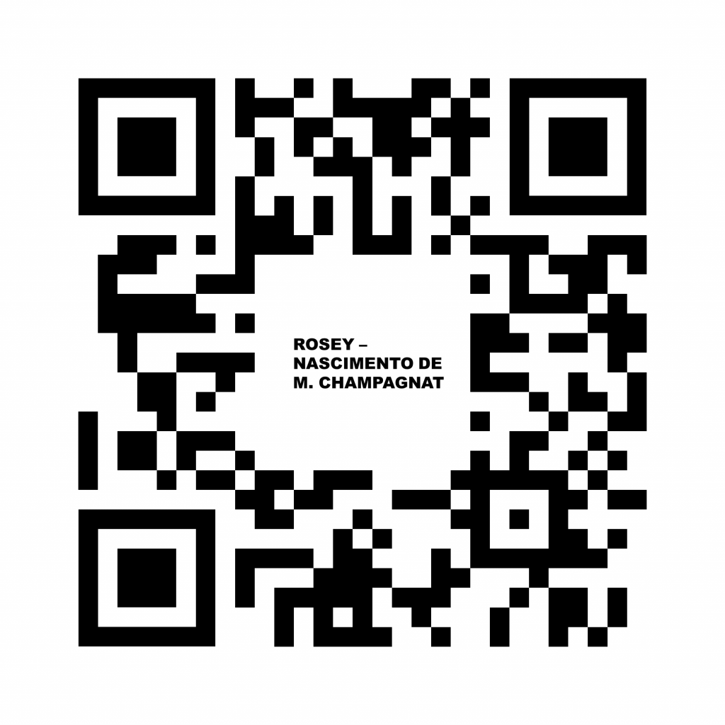 Visita Virtual Rosey